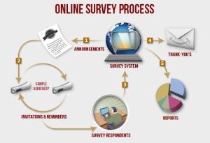 online-surveys-process